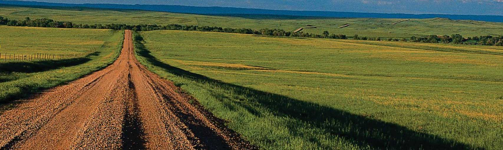 A long dirt road forges a path through the green pastures of Nebraska.  What adventures lie just over the horizon?